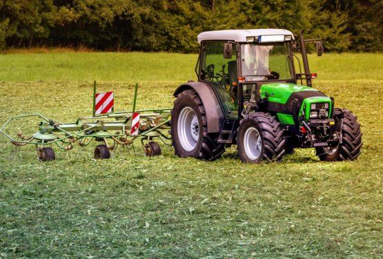 Hala rolnicza – co można wybrać?